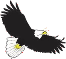 Elgixin Chapter Eagle